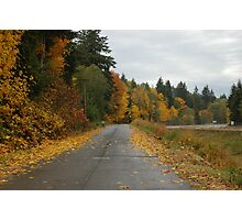 Fall Drive Photographic Print