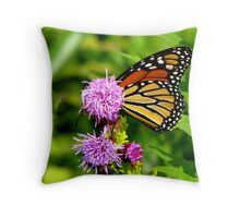 Shy Monarch Throw Pillow