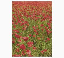 Tuscan Poppy Field. T-Shirt