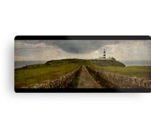 Cork Seaside Metal Print