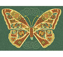 Celtic Butterfly Photographic Print