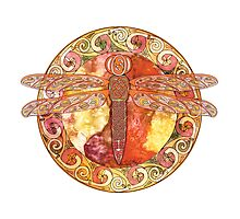 Hot Celtic Dragonfly Photographic Print