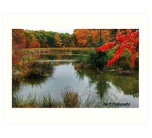 """""""a red autumn in the wetlands"""" Art Print"""