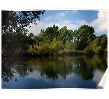Beus Pond ~ Mirror Image Poster