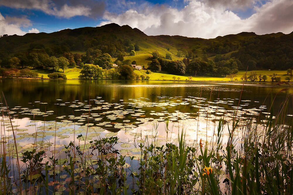 A Perfect Summers Day by Robin Whalley