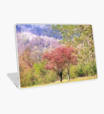 Valley Trees In Springtime Laptop Skin