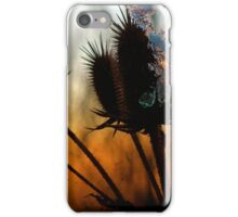 Icy Teasels iPhone Case/Skin
