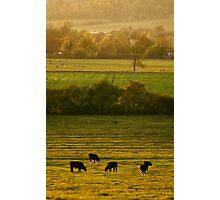 Across the valley - Bucks, UK Photographic Print