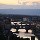 bridges over the Arno by Anna Goodchild
