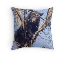 Eye on the Persimmon Throw Pillow