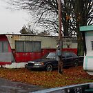 Trailer Park In The Rain by gailrush