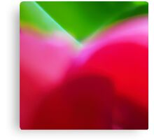 Colors of Spring Abstract Triptych Section 1 Canvas Print
