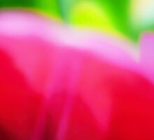 Colors of Spring Abstract Triptych Section 2 by Menega  Sabidussi