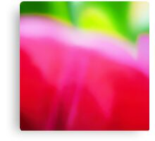 Colors of Spring Abstract Triptych Section 2 Canvas Print