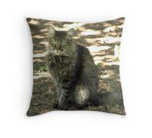 Mr Kitty Cat Throw Pillow