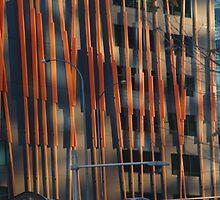 Modern Architecture by Robert Winslow