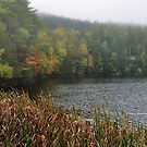 New York's Adirondack region V by PJS15204