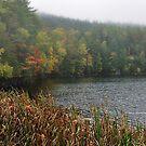 New York's Adirondack region V by PJS15204