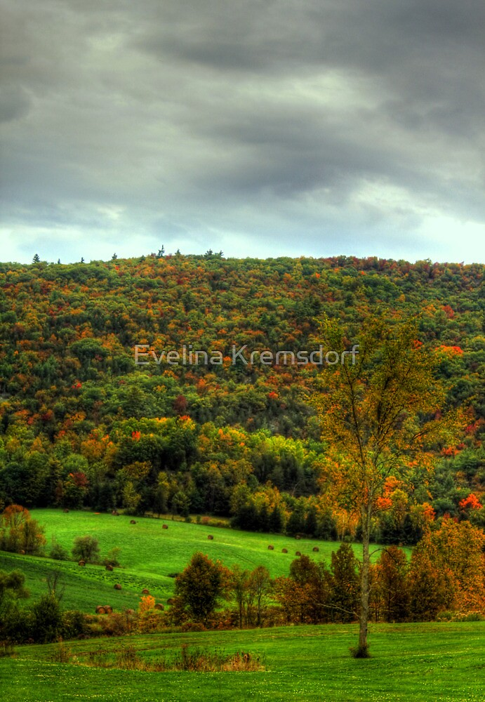 The Colors of October by Evelina Kremsdorf