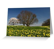 It's Spring! Greeting Card