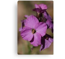 Purple pattern Canvas Print