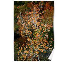 Juxtaposition in Autumn Poster