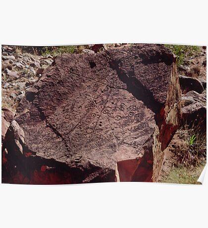 Petroglyph Ndala Gorge 19940511 0004 Poster