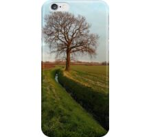 Spring is on its way iPhone Case/Skin