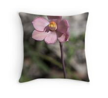 Thelymitra carnea Pink sun orchid Throw Pillow