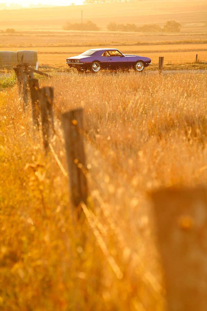 Camaro on Sunset by Tony Rabbitte