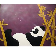 Relaxin' Panda Photographic Print