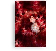 Better Red than Dead Canvas Print