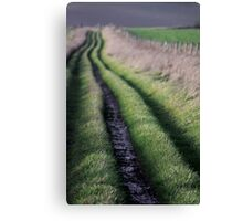 Path to Nature Canvas Print