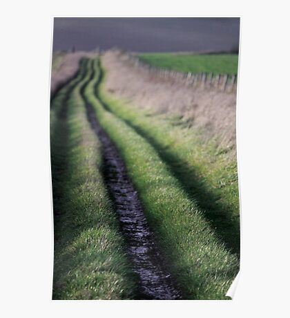 Path to Nature Poster