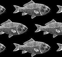 White Fish on Black by studi03