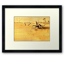 Drought in Outback Framed Print
