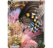 Pipevine Swallowtail Butterfly in Mimosa's Silky Blossoms iPad Case/Skin