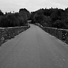 Old road bridge. by Finbarr Reilly
