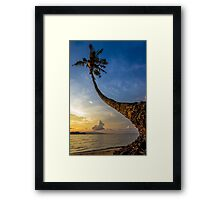 The curve of coconut tree Framed Print