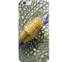 Flamingo Tongue Snail on Purple Coral Fan iPhone Case/Skin