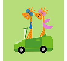 Giraffes and Car  Green Photographic Print