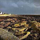 les rochers à Penmarch by Elie Le Goc
