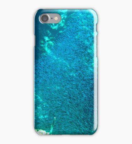Tornado of Silver Fish iPhone Case/Skin