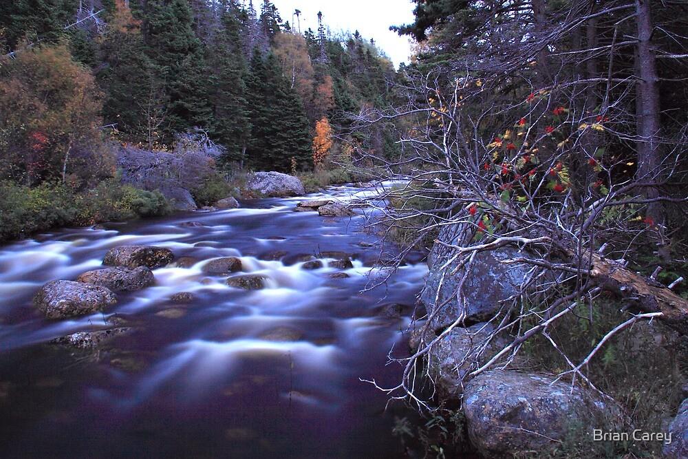 Blue River by Brian Carey