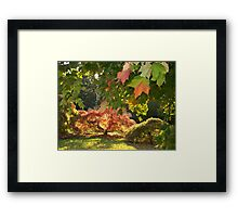 An  Autumn Scene   Framed Print