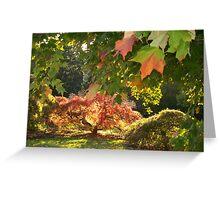 An  Autumn Scene   Greeting Card