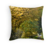 Natures Colours. Throw Pillow