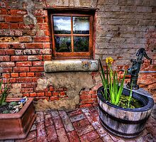 The Window by Garry Quince