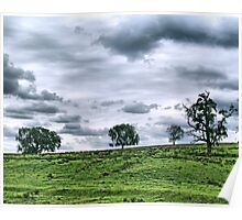 Trees on hill, Lancaster County Poster