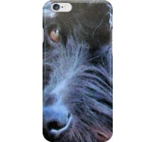 The Stray iPhone Case/Skin
